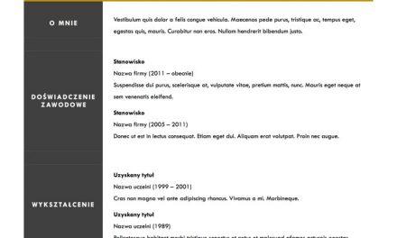 CV minimalistyczne – Szablon 1