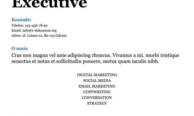 CV minimalistyczne – Szablon 5
