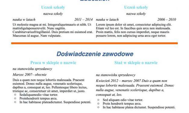 CV designerskie – Szablon 5