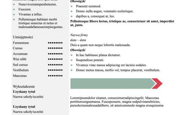 Eleganckie CV – Szablon 4
