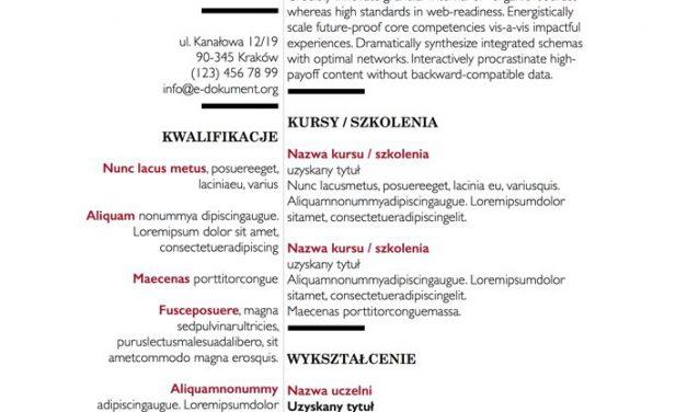 Eleganckie CV – Szablon 5