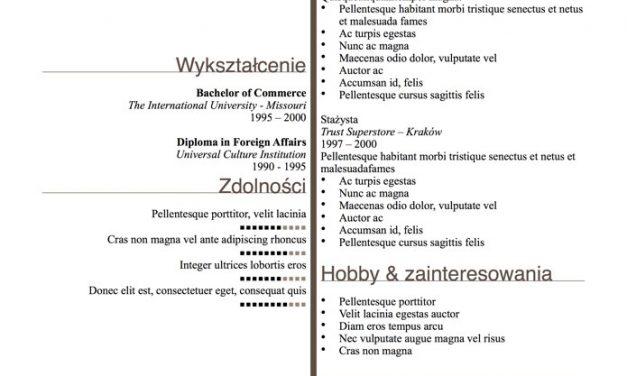 Eleganckie CV – Szablon 6