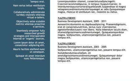 CV funkcjonalne – Szablon 4