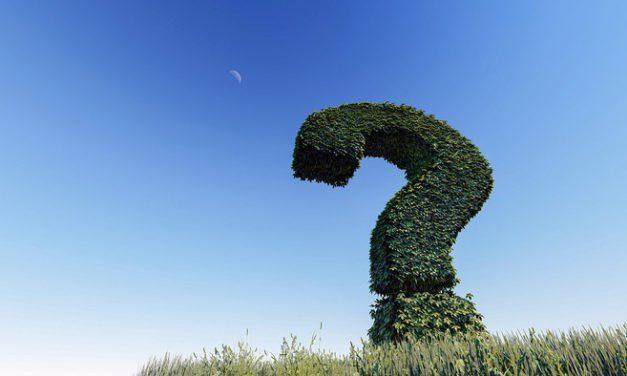 Pytania na rozmowie kwalifikacyjnej: Historia zatrudnienia